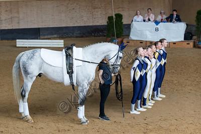 Pferd_Inter_2019_0939_klickvolti