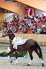 World Championships Vaulting 2019 Ermelo, Jannik Liersch (GER), Horse: Elegante, Lunger:  Alexander Hartl