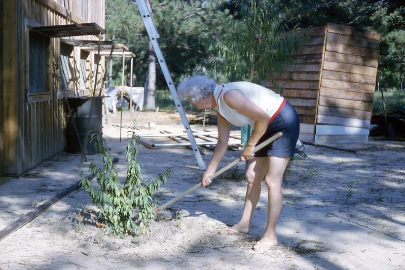 Lake House Gardening