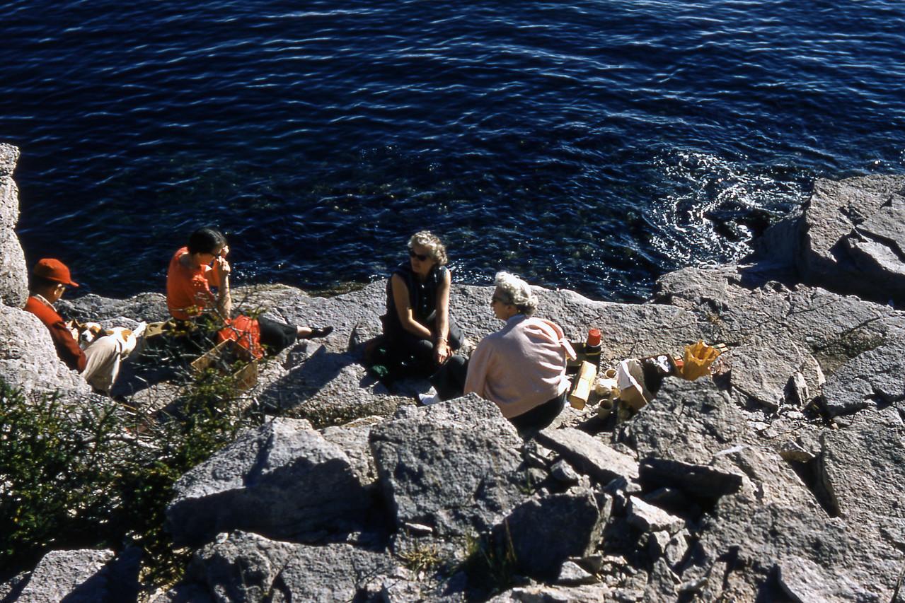 Newfoundland Coastal Cliffs