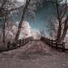 Nature-002 - Max Shot~R_Metzel