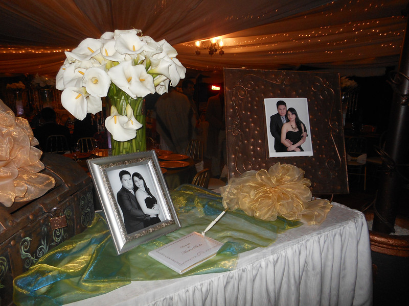 The guest book and wedding portrait.