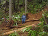 It took out about 50 ft of trail. Here is a view from the other edge of the slide.