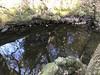 Trap site 2/3 near Jean Pero