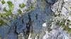 Perkins Creek Bedrock Section (video 34s)