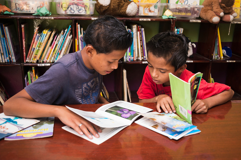 Boys reading books together