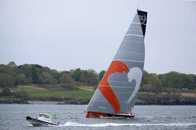 Team Alvimedica, 2015 Volvo Ocean Race, Newport Harbor, Narragansett Bay, Rhode Island
