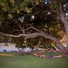big island hawaii mauna lani resort eva parker woods cottage wedding vow renewal 20161014170647-1