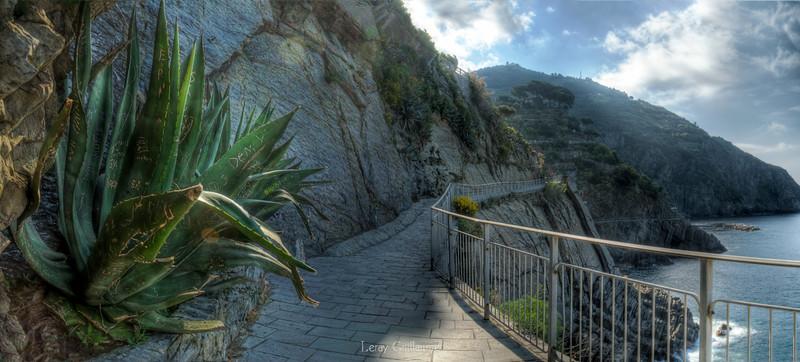 Strada del Amore-Cinque terre-Liguria