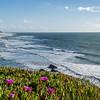 La côte entre Nazaré et Figueira da Foz