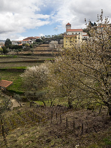 Le printemps dans la vallée du Rio Douro