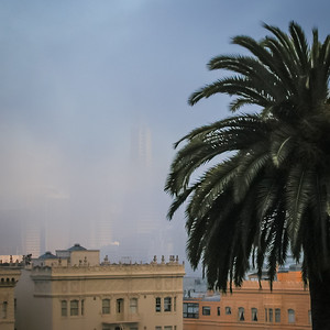 Et soudain, le brouillard arrive !