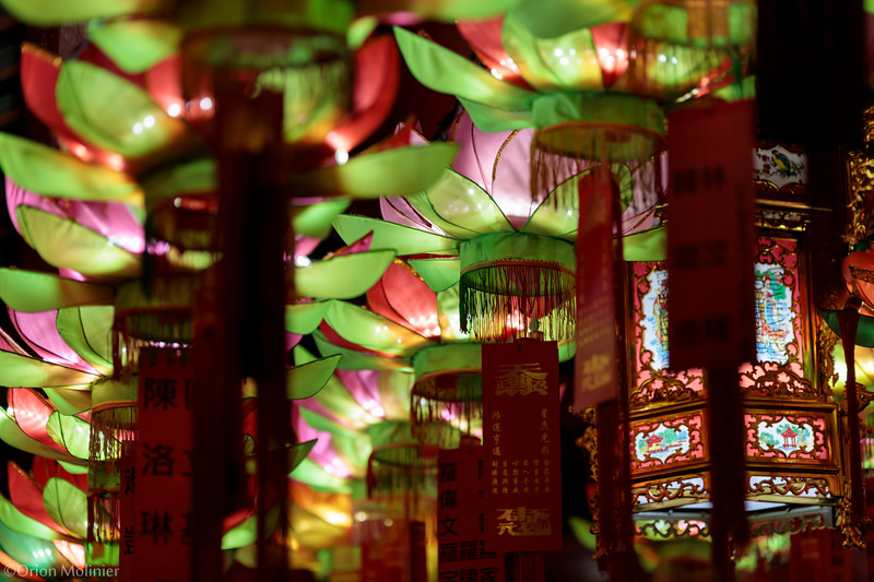 Illumination de Lanterne en fleur