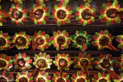 Lanternes en fleur