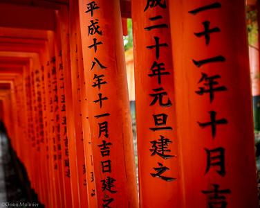 Tori-i au Fushimi Inari-Taisha