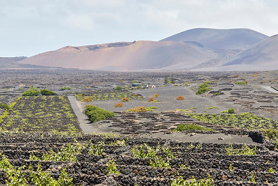 20180510 Fuerteventura img026