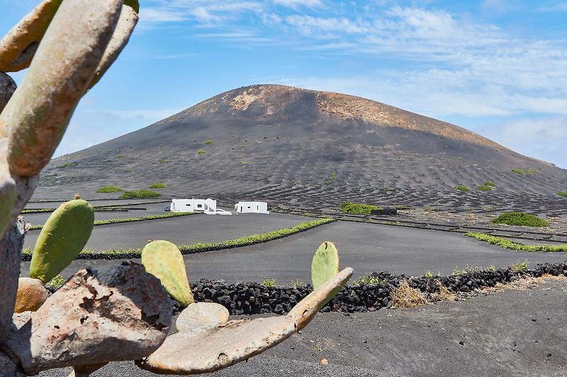 20180510 Fuerteventura img031