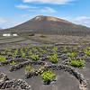 20180510 Fuerteventura img024
