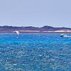20180510 Fuerteventura img015