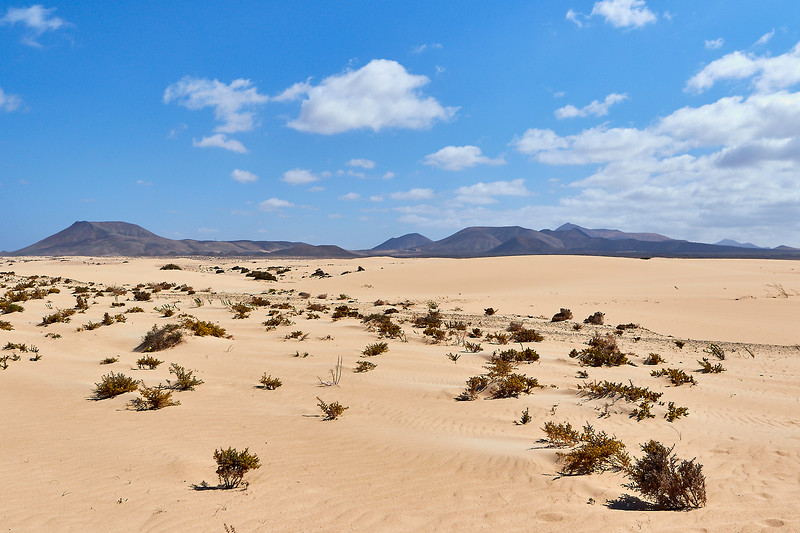 20180510 Fuerteventura img062