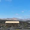 20180510 Fuerteventura img029