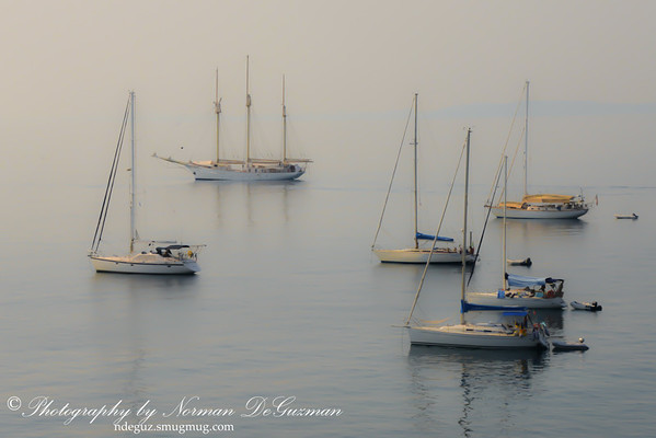 Anchored Yachts
