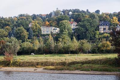 Loschwitz