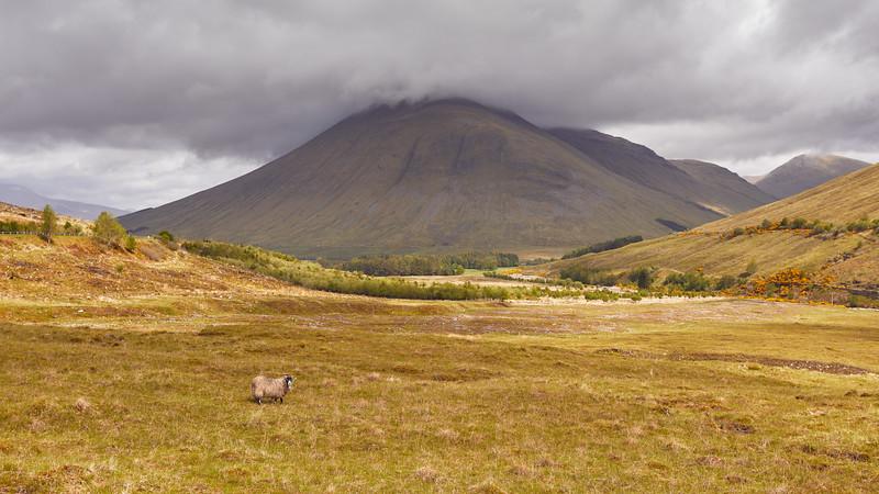 Beinn Odhar, Highlands