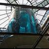 Aquarium immense