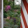 L'espace d'un moment : saisie d'un jardin d'une cour intérieure.