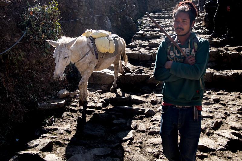 Au pays des sherpas. Everest, février 2019