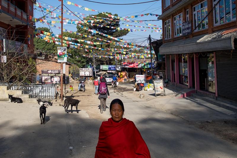 Nagarkot. Sur les hauteurs de Bhaktapur, février 2019