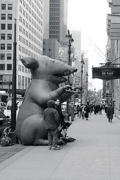 Manhattan Avril 2013
