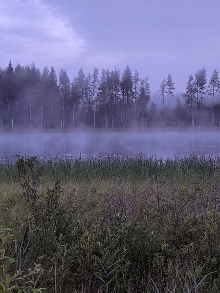 Mois de juillet près de Jyväskylä, à 3 h du matin par 12° !
