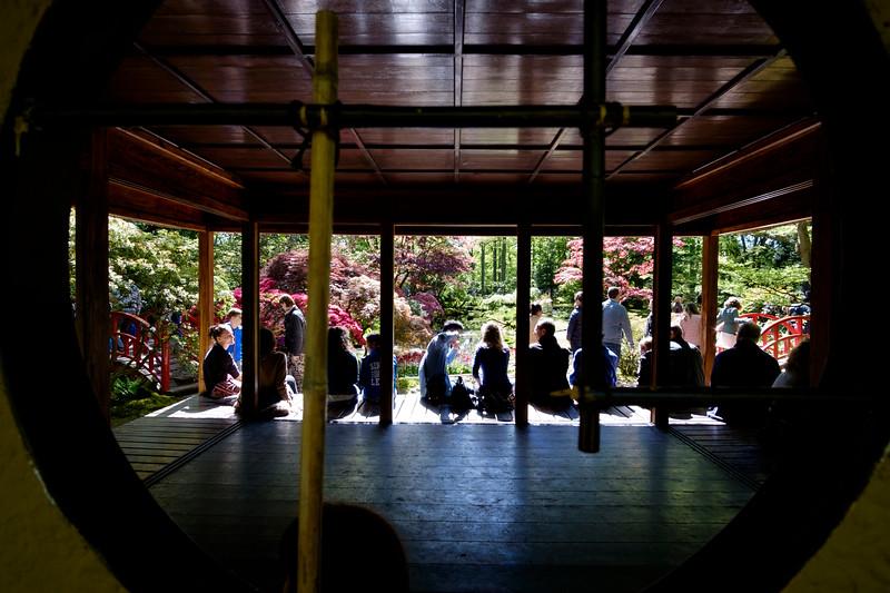 La Haye. Hollande. Parc Clingendael. Jardin japonais. Mai 2017