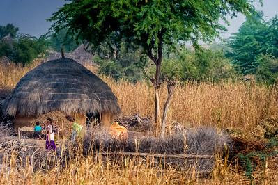 En route vers Jaisalmer(305Km), Rajasthan, Inde