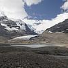 Toujours le glacier Athabaska, mais au retour de Jasper