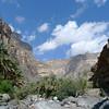 Le canyon s'élargit, et laisse place à la palmeraie...