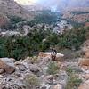 Juju enfin sortie du Wadi...