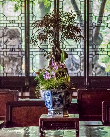 Liu Lingering Garden of Suzhou