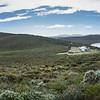 Tasmanie avril 2015