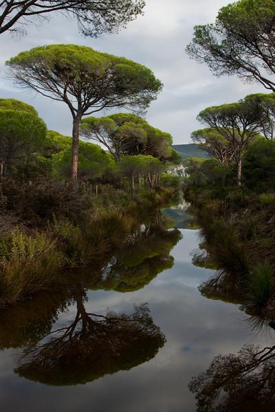 Parc régional de la Maremme.