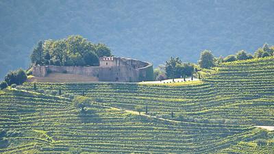 Lago di Lugano - Castello et vignobles de Morcote, vus des hauteurs de Brussino, près de Alpe di Brusino