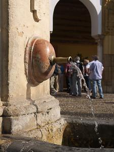 Cordoba - Mezquita - Patio de los Naranjos