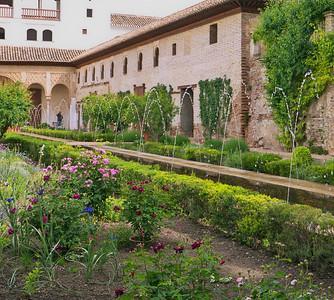 Granada - Generalife - Patio du Canal