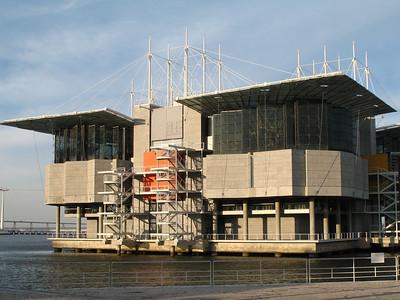 Lisbonne - Oriente - Oceanário de Lisboa (oceanarium, aquarium)