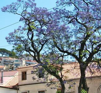 Lisbonne - Largo Martim Moniz