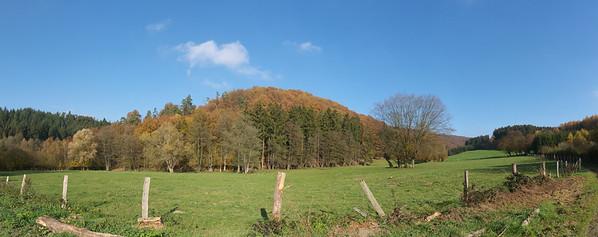 """Lieu dit """"Brûlée Fagne"""", bois Mayâ - Marcouray - Ardennes - Belgique - Octobre 2011"""
