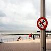 Oostende. Seroucí čoklové jsou zjevně nadnárodní problém!