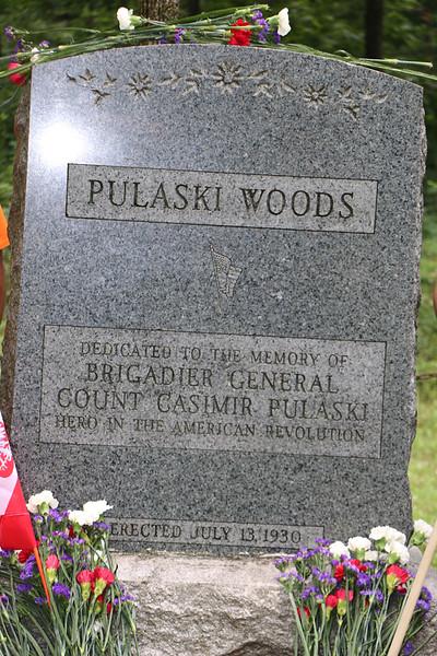 Pulaski Woods